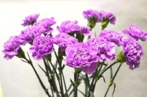 Цветы на похороны дедушки. Какие цветы на похороны мужчине живые