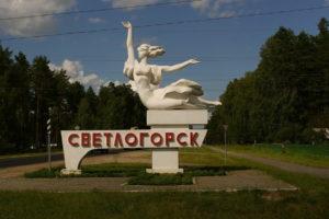 Москва Светлогорск ритуальные услуги перевозка гроба.